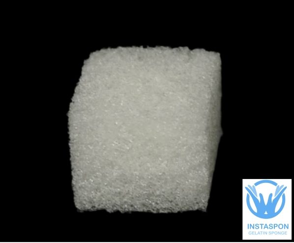 collagen sponge chitosan sponge absorbable gelatin sponge manufacturer India